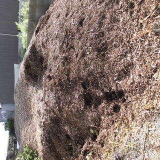 植木剪定チップ 畑・花壇の肥料・土壌改良材に