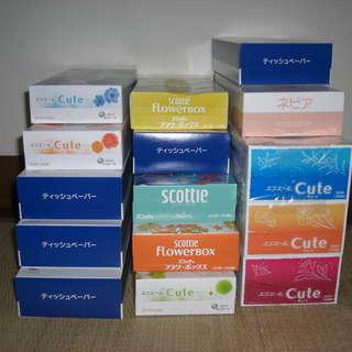 BOX ティッシュ 15箱