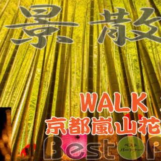 【京都・嵐山】WALKコン☆12/11(日) 16:00~☆京都・...