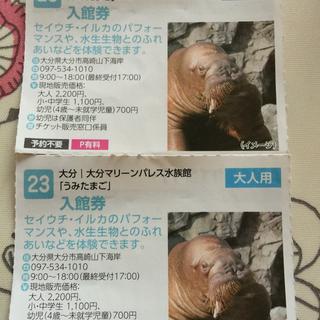 マリーンパレス水族館「うみたまご」入館券2枚セット