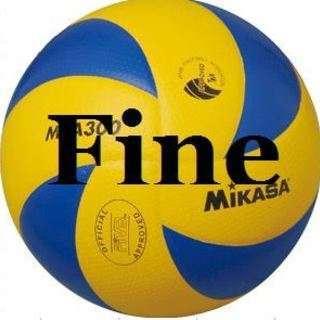男女混合6人制バレーのメンバー募集「Team Fine(チームファ...
