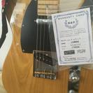 テレキャスギター Fujigen NTL-100