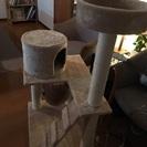 新品キャットタワー