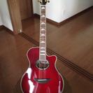 ギターはじめてみませんか!