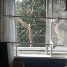 窓枠用室内物干し竿