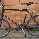 スポーツ向けの自転車