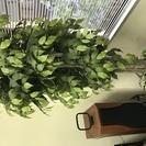 人口観葉植物(造花) 大型 光触媒