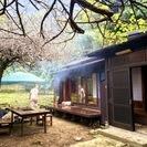 鎌倉 稲村ヶ崎の『古民家』で、展示...