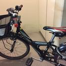 ブリヂストン子供用自転車エクスプレスJR22型