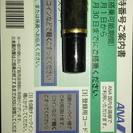 ANA株主優待(有効期限2017年11月30日)