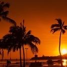 3.98万円〜大切なペットの最後にハワイ海洋散骨はいかがでしょうか?