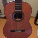 ギター譲ります。2本あり。値下げ可能