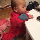 8ヶ月になる娘