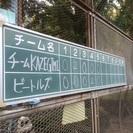 社会人野球(20代多め)