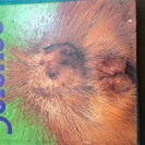 (洋書)米国の小3の理科の教科書(中古)Gr.3 Science ...