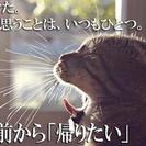 内装工事 9,000円〜18,000円