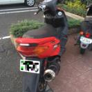 シグナス SE12J改