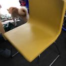 IKEAのリビングチェア4脚