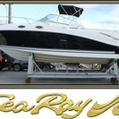 クルーザー SeaRay 270 AmberJack 船 船舶 ヨ...