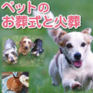 大切なペットとのお別れ… ペットのお葬式、火葬、個別火葬、姫路から。の画像