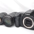 ●付属品多数●極上品 Canon キャノン EOS 10D Wレン...