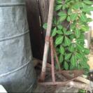 昔の農道具