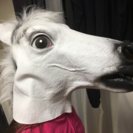 馬の被り物(白)