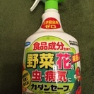 家庭菜園☆人に優しい殺虫剤