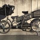 子乗せ自転車 ふらっか〜ずシュシュ FRCH203F