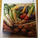 野菜作りの本   3冊セット