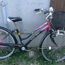 子供用 自転車 パナソニック