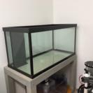 1200×600×600 ガラス水槽一式セット