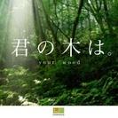2月4日(土)個性心理學お茶会 in 津幡 ヒノキのお家