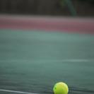 テニスしたい人~
