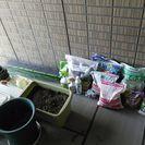 ガーデニング・家庭菜園セット