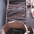 薪向き?柿の木 剪定したやつ