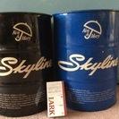 Ken  &  Mary  Skyline  !