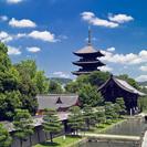 京都駅すぐそこ!東寺・五重塔のある町。東寺シェアハウス!光熱費すべ...