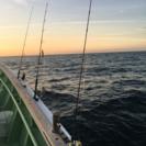 釣り仲間募集