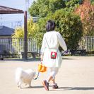 【再】GWに活躍して頂ける ペットシッターさん募集します - 東大阪市