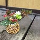 【花倶楽部】銀座で本格的な華道&フラワーを学ぶ!