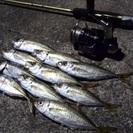 釣りサークルメンバー募集