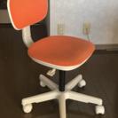 代官山ウニコ unico の椅子