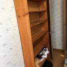 あげます!木製 本棚