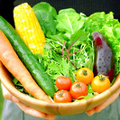 【日本初!収穫体験付きBBQ】自分で採る無農薬野菜に、たっぷり地元...