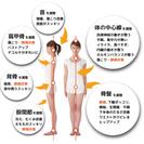 カイロプラクティック・美容カイロ 1日セミナー