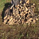 【引き取り限定】薪・キャンプに昔ながらの落葉樹の枝(太さ2~5cm...