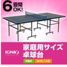 6畳間OK! イグニオ(IGNIO) 家庭用サイズ 卓球台(移動キ...