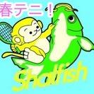 神戸のテニス🎾 サークルです【テニスレベル初中級以上 30代まで ...