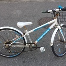 子供用 24インチ スポーツ自転車 ガキチャリ!!